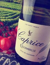 Caprice de Colombelle, Cotes de Gascogne, Plaimont