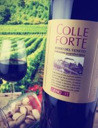 Colle Forte, Lenotti Estate