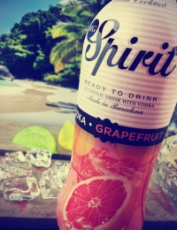 MG Spirit Vodka & Grapefruit