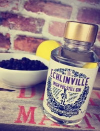 The Echlinville Irish Pot Still Gin Miniature 5cl