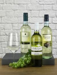 Trio of Pinot Grigio Wines