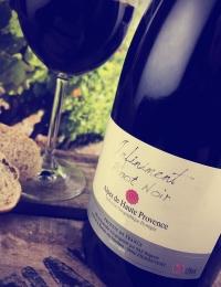 Pinot Noir Regusse, Alpes de Haute Provence