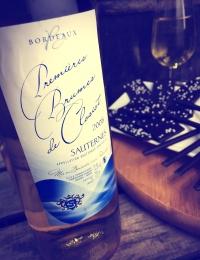 Chateau Premieres Brumes de Closiot Sauternes 50cl
